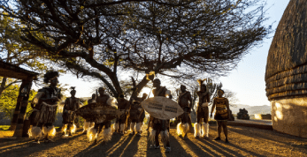 Receive Help with General Johannesburg Tours